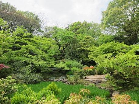 根津庭園2