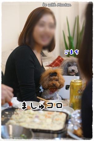 DSC03936-20141229.jpg