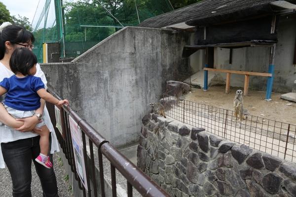 岡崎市 東公園 動物園