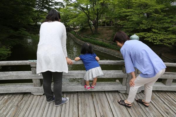 岡崎市 東公園 何がいる?