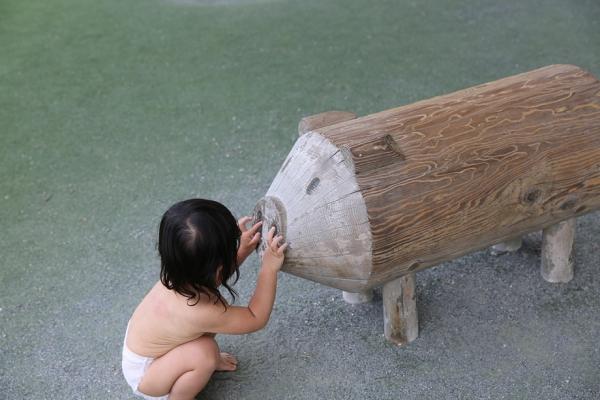 豚に砂掛け野生児