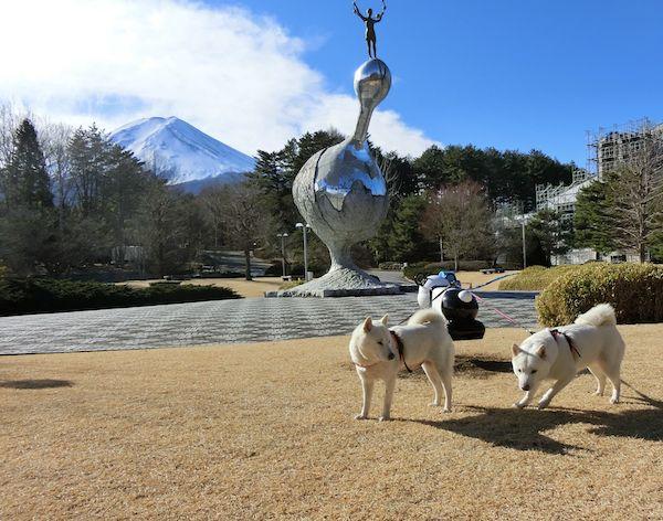 2015.1.2 富士北麓公園