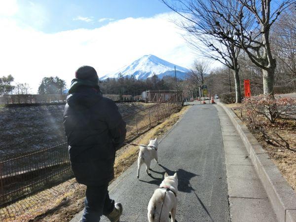 2015.1.2 PICA富士吉田6