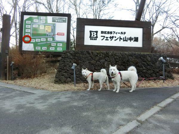 2015.1.2 フェザント山中湖1