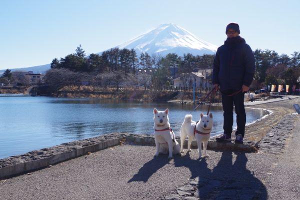 2015.1.3 河口湖からの富士山