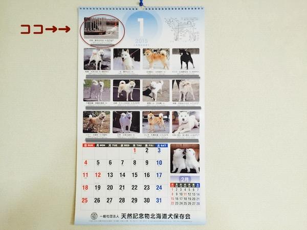 カレンダー2015年1月