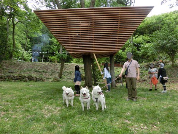 2015.5.23 小諸ツリーハウスプロジェクト11