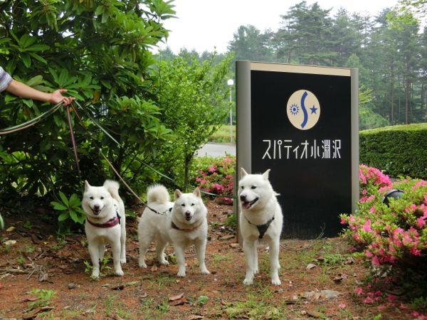2015.5.14 道の駅こぶちさわ2