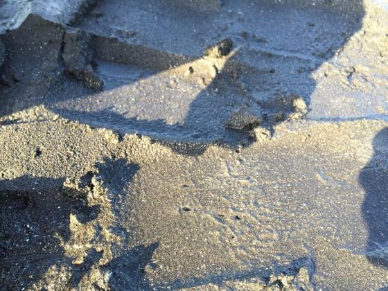 20150510011_スコップで砂の表面を削る