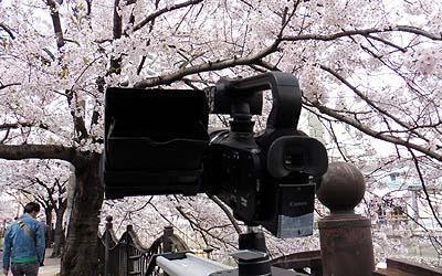 ookasaku2.jpg