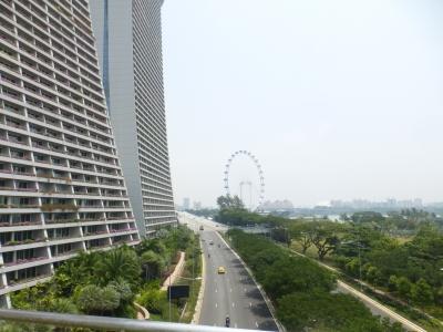 通路から観るシンガポールフライや― 2015 3・20