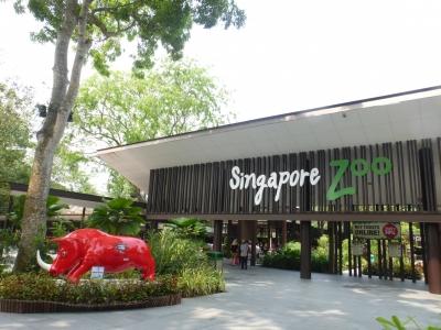 シンガポール動物園 2015 3・22