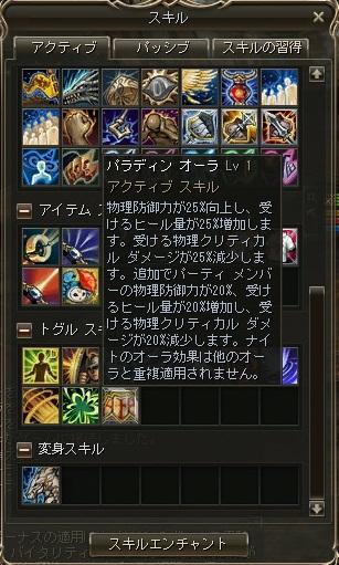 101Sk.jpg