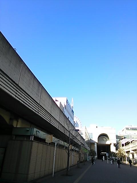 DSC_0471.jpg