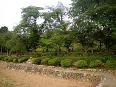 織田氏七代の墓所2