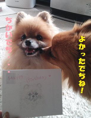 DSC_0057_20150301131507694.jpg