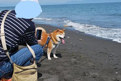 海って楽しい~