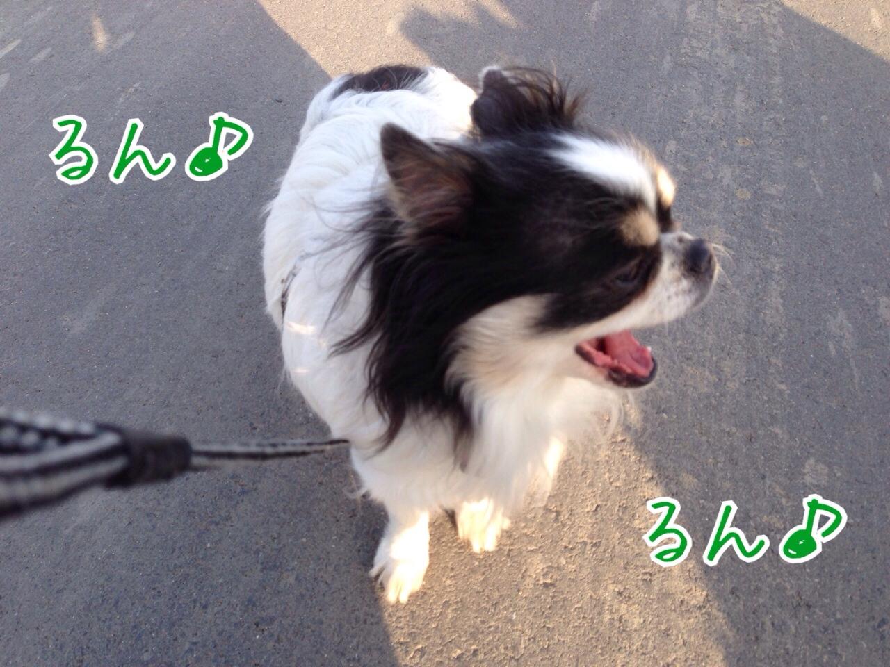 fc2blog_2015031521004591e.jpg
