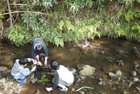濁沢で川遊び