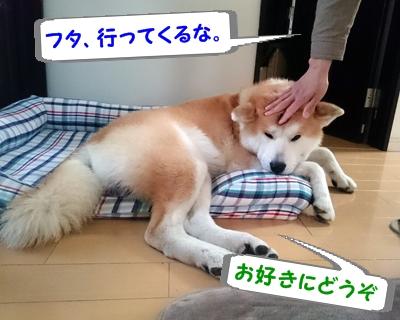 b_20150422_3.jpg