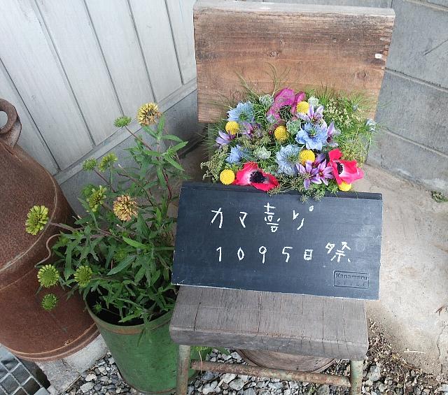 20150308-22.jpg