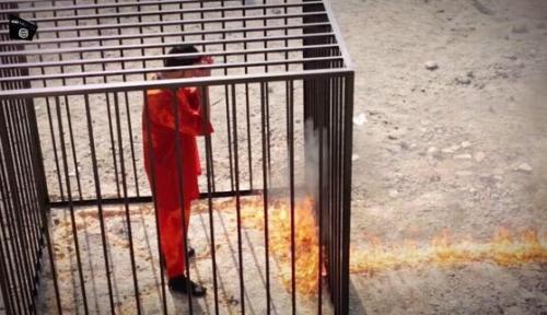ヨルダン人パイロットの焼殺動画の画像