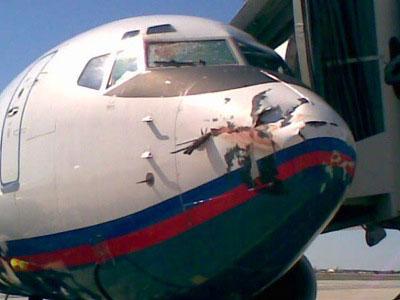 ドイツ機墜落事故に関する画像