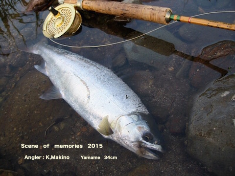 makinoyamame34.jpg