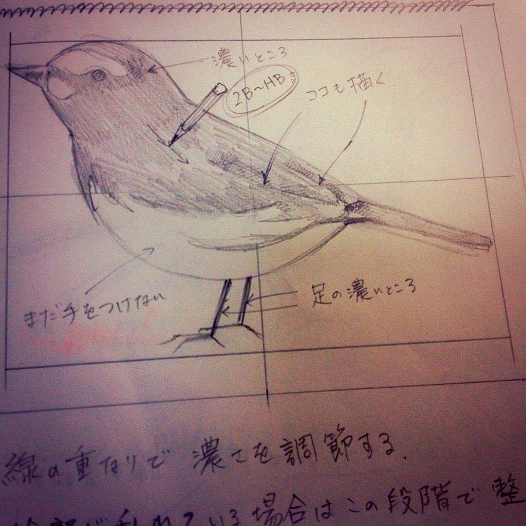 S__1908739.jpg