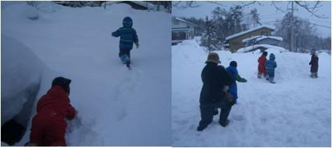 ひだっこ・つぼ雪