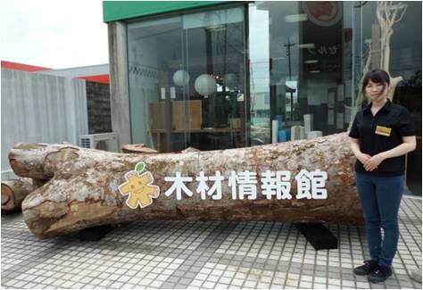 Sakura・木材情報館