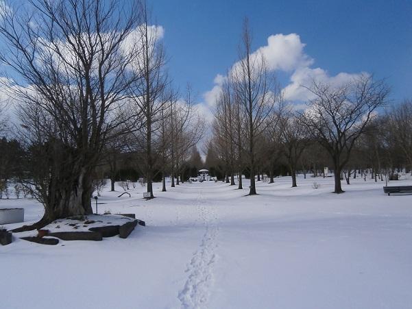 生態系公園全景