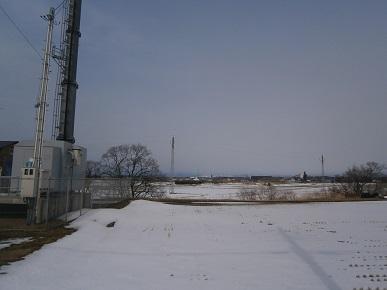 冬の田んぼ1