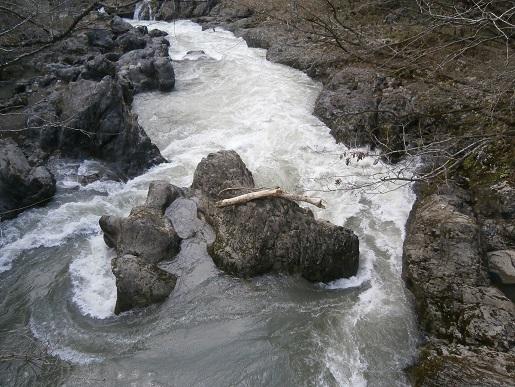 2015春真瀬川