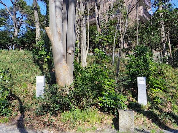 「等々力渓谷横穴墓群」(東京都指定史跡)