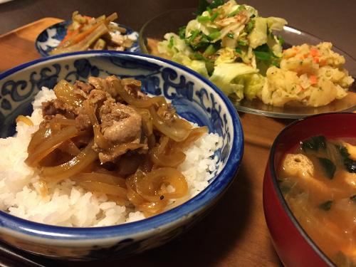 Apr15_豚丼