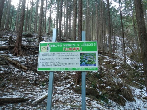 横瀬二子山4