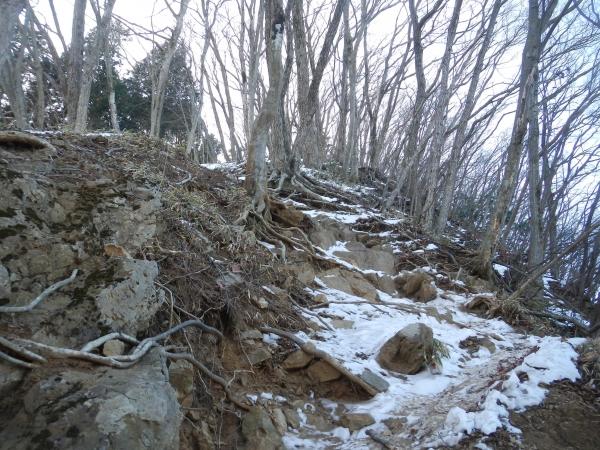 横瀬二子山14