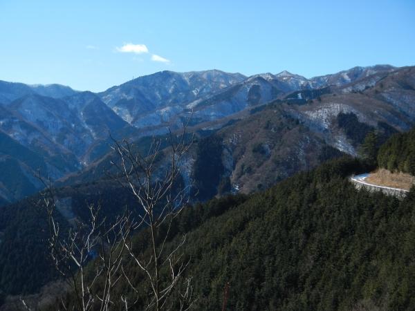 蕨山 072