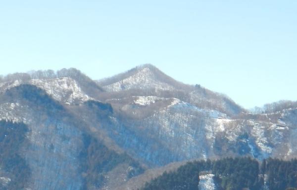 蕨山 071