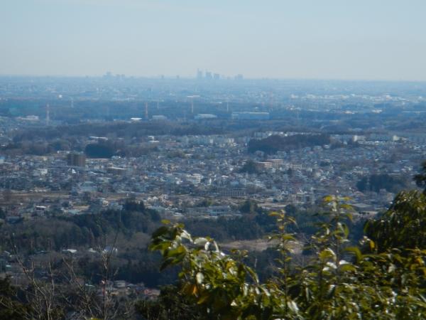 日和田山・物見山 021