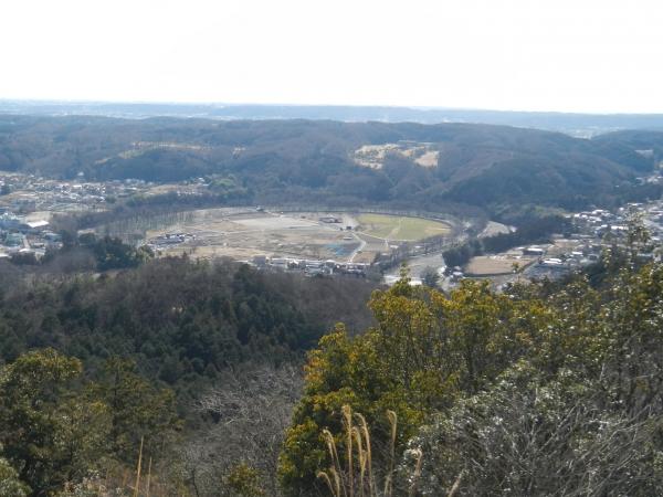 日和田山・物見山 020