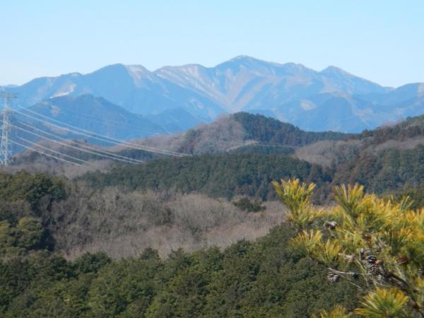 日和田山・物見山 030