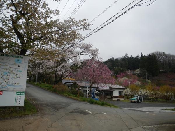 丸山 002
