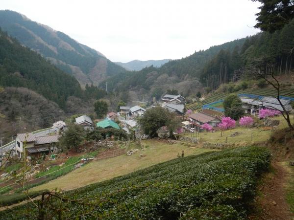 丸山 051