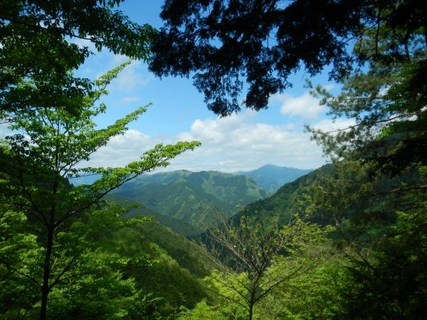 市道山・臼杵山 038
