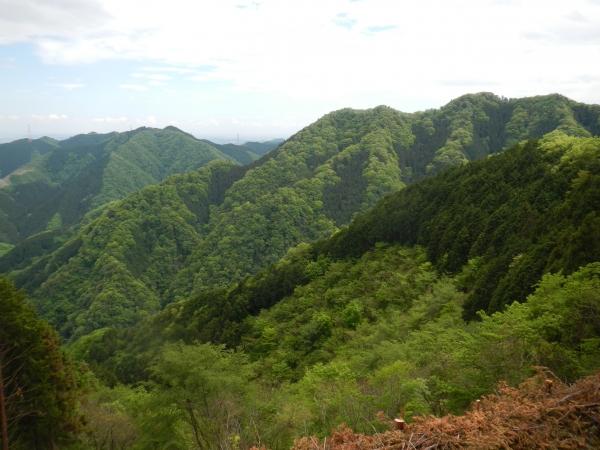 市道山・臼杵山 062