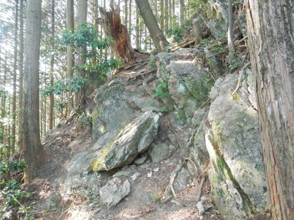 城山・上高岩山 014