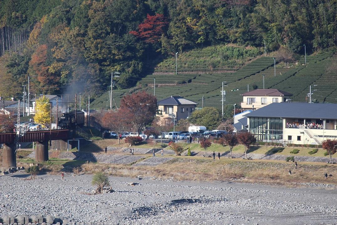 2014ooigawa10.jpg