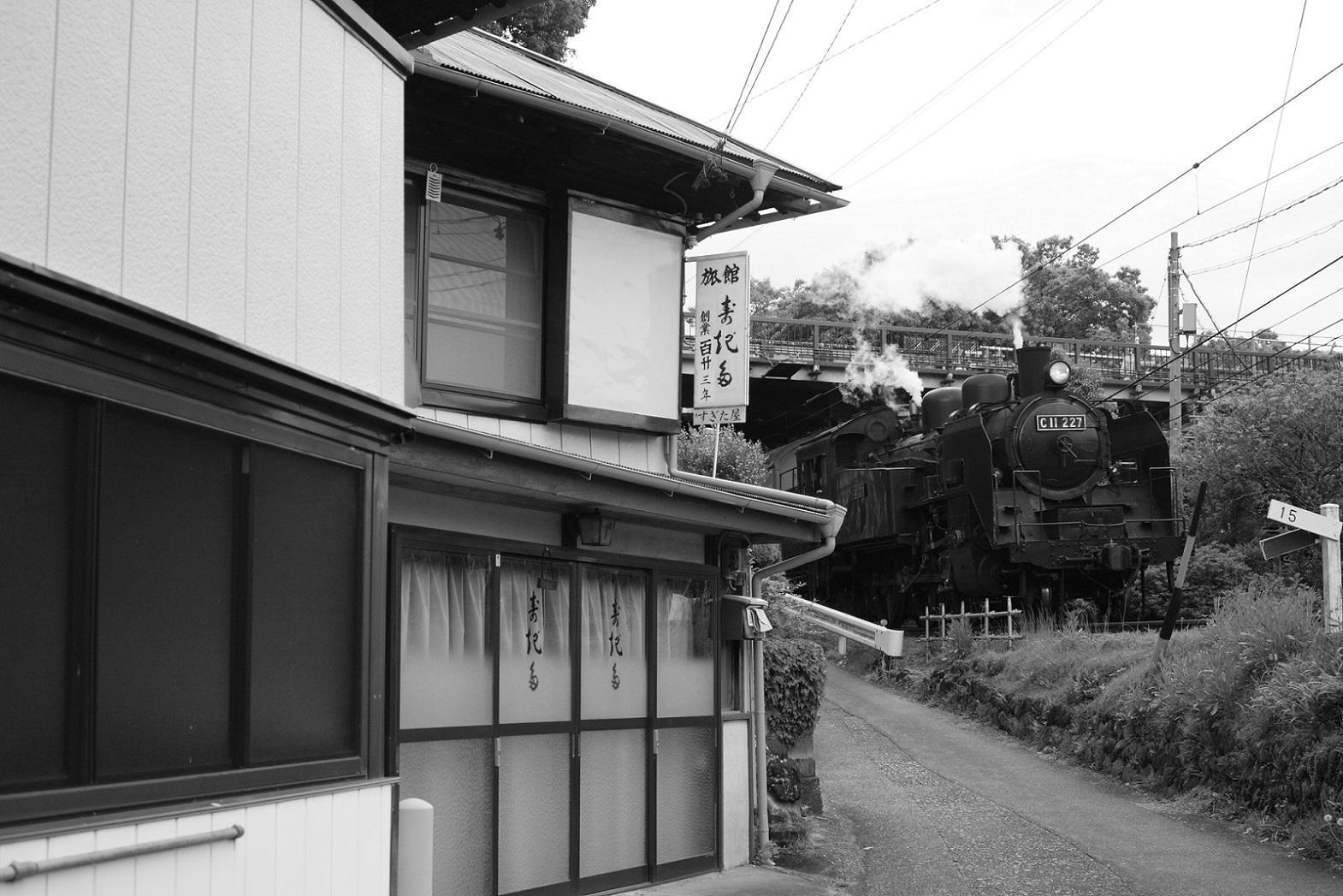 2015ooigawa47.jpg